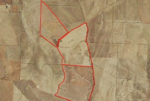 931 Watts Range Road, Gulnare, SA 5471