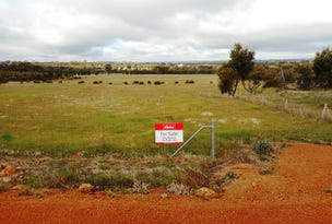 Lot 168 Prosser Road, Woodanilling, WA 6316