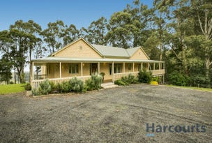 35 Hollins Road, Trida, Vic 3953