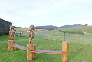 106 Weeks Road, Barrington, Tas 7306