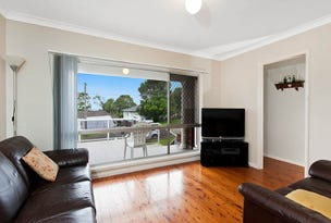 146 The Kingsway, Barrack Heights, NSW 2528