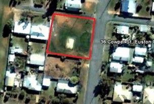 36 Cowper Street, Euston, NSW 2737