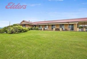 836 Luskintyre Rd, Luskintyre, NSW 2321
