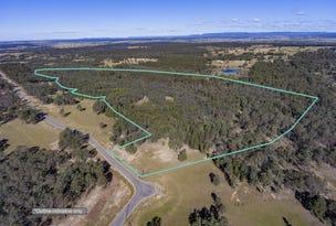 219 Robertson Circuit, Singleton, NSW 2330