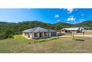 147 Constance Avenue, Rockyview, Qld 4701