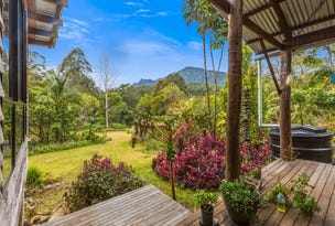 Lot2/3565 Kyogle Road, Mount Burrell, NSW 2484