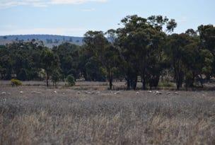Warrawong 1678 Merrygoen Road, Neilrex, NSW 2831