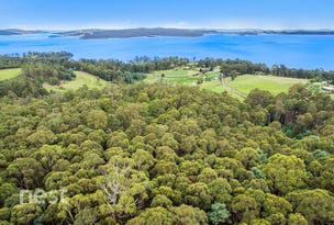 Lot 1, Rose Lane, Flowerpot, Tas 7163