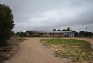 107 Yappara Road, Lameroo, SA 5302