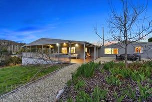 397 Jensens Road, North Scottsdale, Tas 7260