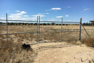 Lot 60 Big Olive Grove, Tailem Bend, SA 5260
