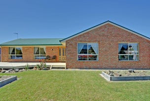 230 Carlton Beach Road, Dodges Ferry, Tas 7173