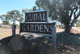 Lot 9,10,13 & 14, Rodda Drive, Cudal, NSW 2864