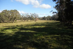 Lot 1, Blencowes Lane, Wildes Meadow, NSW 2577
