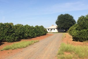 2573 Old Willbriggie Rd, Griffith, NSW 2680