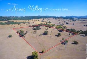 "Lot 113, ""Spring Valley"" Ivydale Road, Gregadoo, NSW 2650"