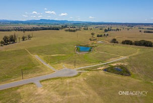 Lot 4 Settlers Close, Singleton, NSW 2330