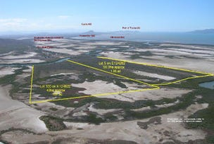 Cape Cleveland, address available on request
