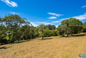 39 Lilyvale Place, Narooma, NSW 2546