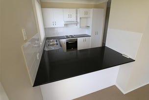 4b Drury Close, Singleton, NSW 2330