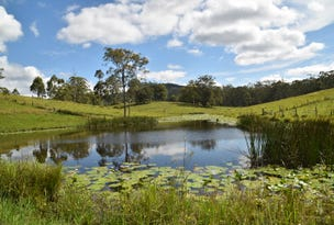 813 Newmans Road, Wootton, NSW 2423