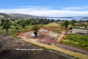 LOT 99 Cemetery Rd, Dover, Tas 7117