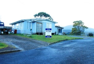 9 Blackwood Street, Zeehan, Tas 7469
