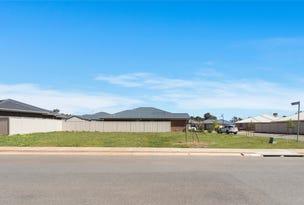 1 Lawes Terrace, Reid, SA 5118