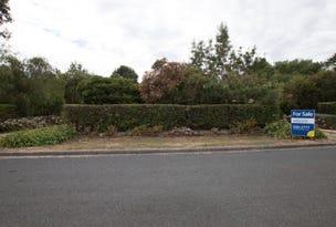 91 Rodger Place, Bushfield, Vic 3281