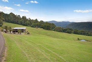 74 Rose Road, Tuntable Creek, NSW 2480