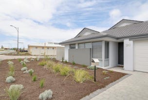 20 Needletail Avenue, Alkimos, WA 6038