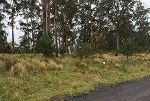 Lot 1 Braidwood Road, Sassafras, NSW 2622