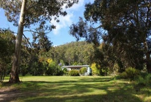 464 Cygnet Coast Road, Petcheys Bay, Tas 7109