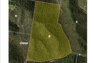 Lot 118 Wollombi Rd, Broke, NSW 2330