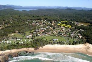 9 Ella Close, Bonny Hills, NSW 2445