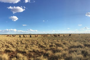 """"""" Canaway Downs """", Quilpie, Qld 4480"""