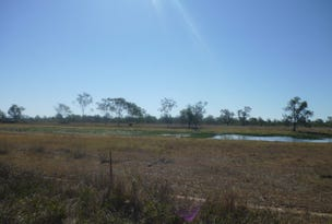 Lot  113 Edwards Road, Pink Lily, Qld 4702