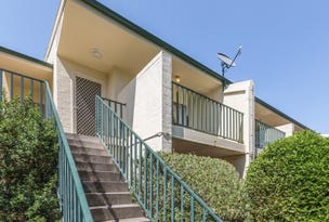 50/12 Albermarle Place, Phillip, ACT 2606