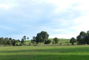 Lot 1, 9 Unnamed 7 Road, Mossiface, Vic 3885