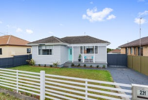 231 Shellharbour Rd, Barrack Heights, NSW 2528