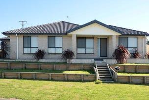 19 Ventura Close, Rutherford, NSW 2320