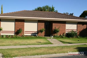 24 Domaille Crescent, Swan Hill, Vic 3585