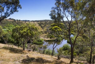 94 Molonglo River Drive, Carwoola, NSW 2620