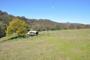 60 Sophia Creek Rd, Scone, NSW 2337