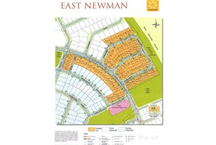 Lot 268 Dales Road, Newman, WA 6753