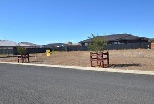 Lot 311 Bottle Brush Avenue, Gunnedah, NSW 2380