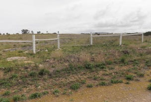 Lot 3 Kewell Road, Wangary, SA 5607