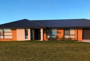 20 Lake Paddock Drive, Leeton, NSW 2705