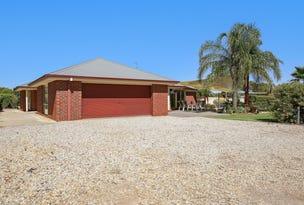 19 James Lillis Drive, Yarrawonga, Vic 3730