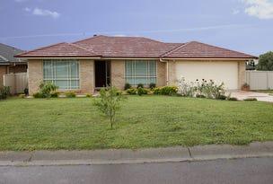 19 James House Close, Singleton, NSW 2330